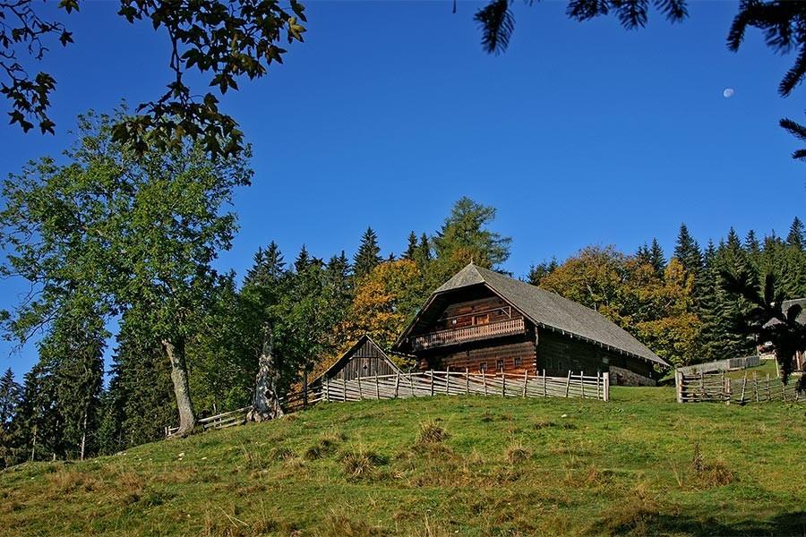 Urlaub in der Waldheimat